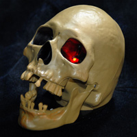Animated Skull